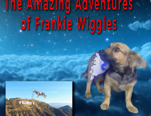 The Amazing Adventures of Frankie Wiggles