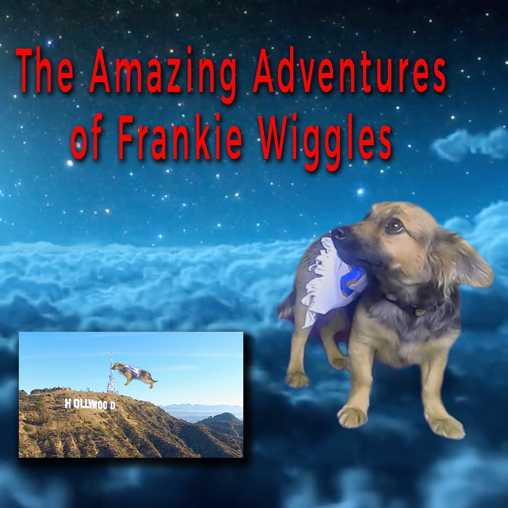 Thumbnail for the post titled: The Amazing Adventures of Frankie Wiggles