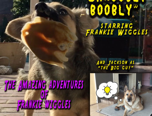 "The Amazing Adventures of Frankie Wiggles – ""Shnoobly Boobly"""