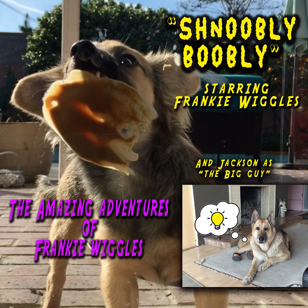 "Thumbnail for the post titled: The Amazing Adventures of Frankie Wiggles – ""Shnoobly Boobly"""