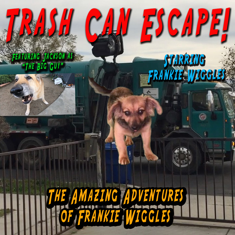 "Thumbnail for the post titled: The Amazing Adventures of Frankie Wiggles – ""Trash Can Escape"""